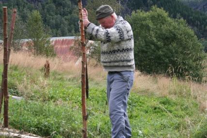 brake&risgardprosjekt Knut 056