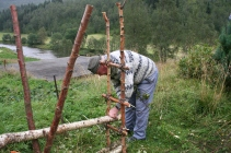 brake&risgardprosjekt Knut 075