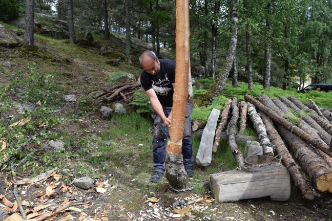 Kurs stege. Vegard Svarstad.  (76)